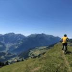 Le 7 migliori mountain bike elettriche di qualità al miglior prezzo del 2021